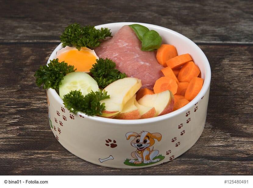 Kochen Für Hunde So Machst Du Dein Hundefutter Selbst Haustiermagazin